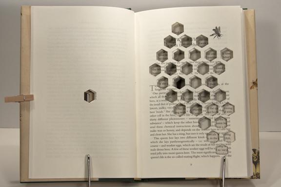 hive-open (1)