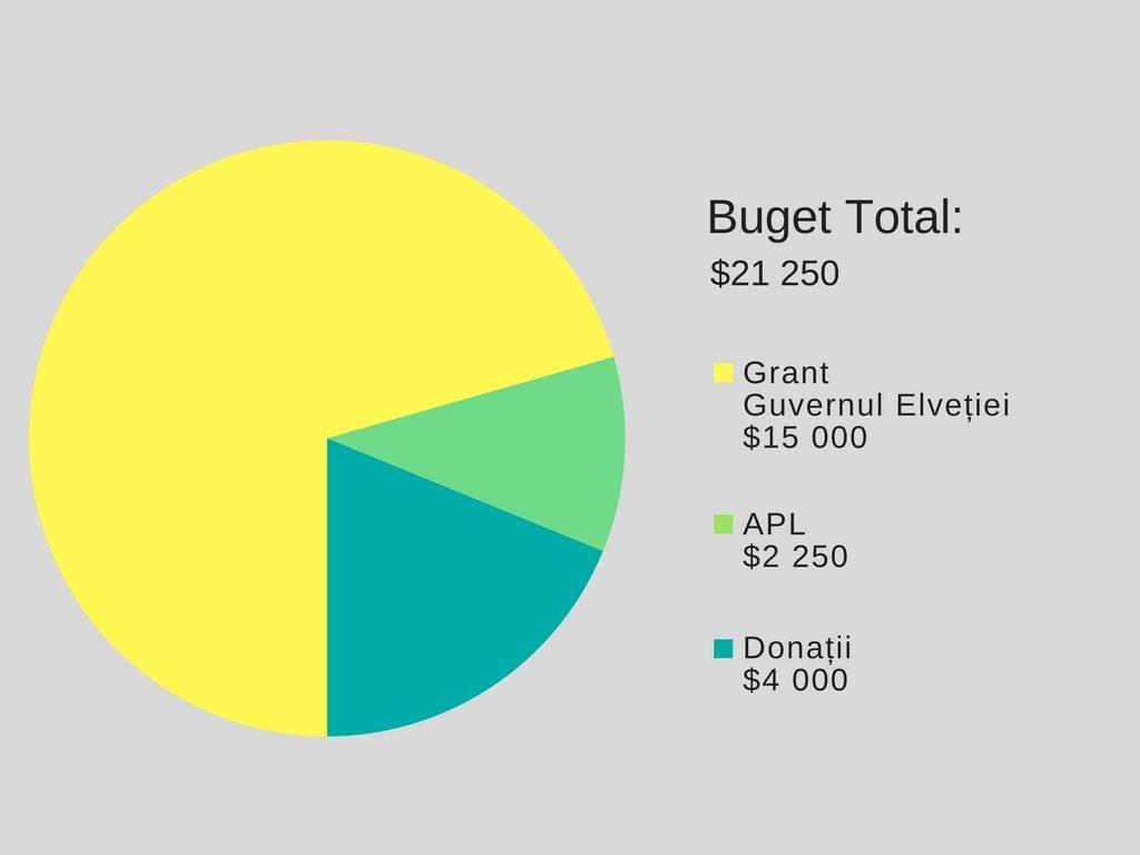 Buget (1)
